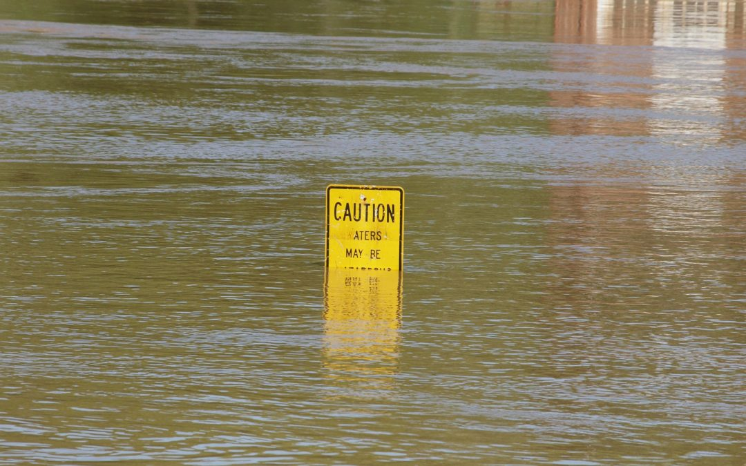 flood insurance for all insurance clients