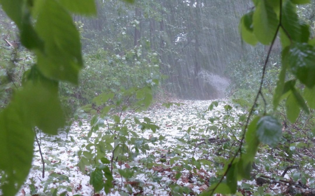Hail storm with water damage