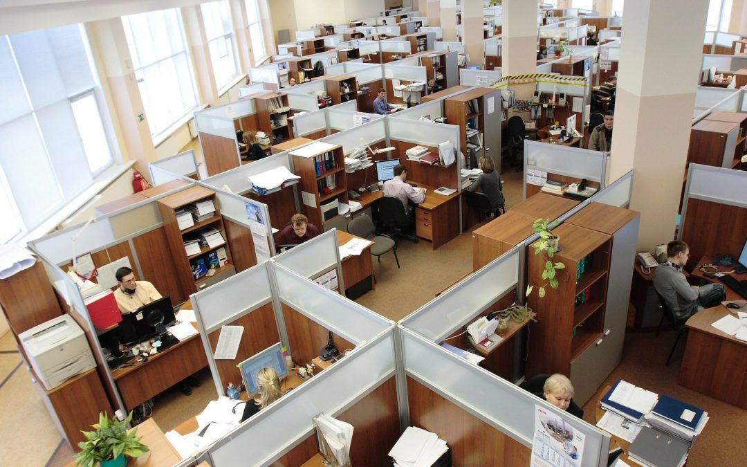 People in office cubicles working